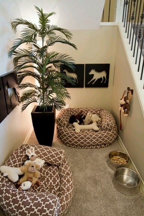 Awkward size areas are perfect for dog rooms