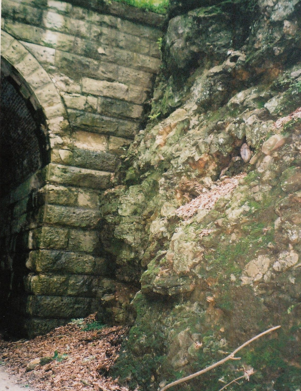 Tunnel Irish miners cut.  Along the trail from here to St. Louis.