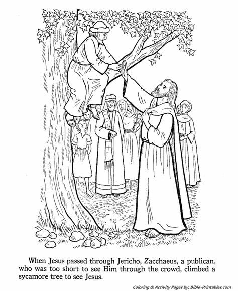 Zacchaeus Climbs A Tree To See Jesus Sunday School Coloring Pages Zacchaeus Bible Coloring Pages
