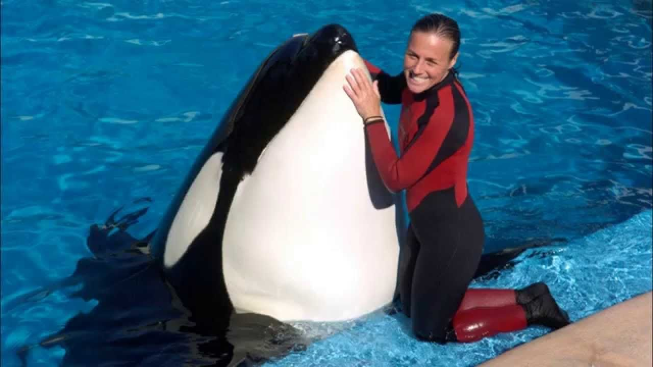 Watch Blackfish Online