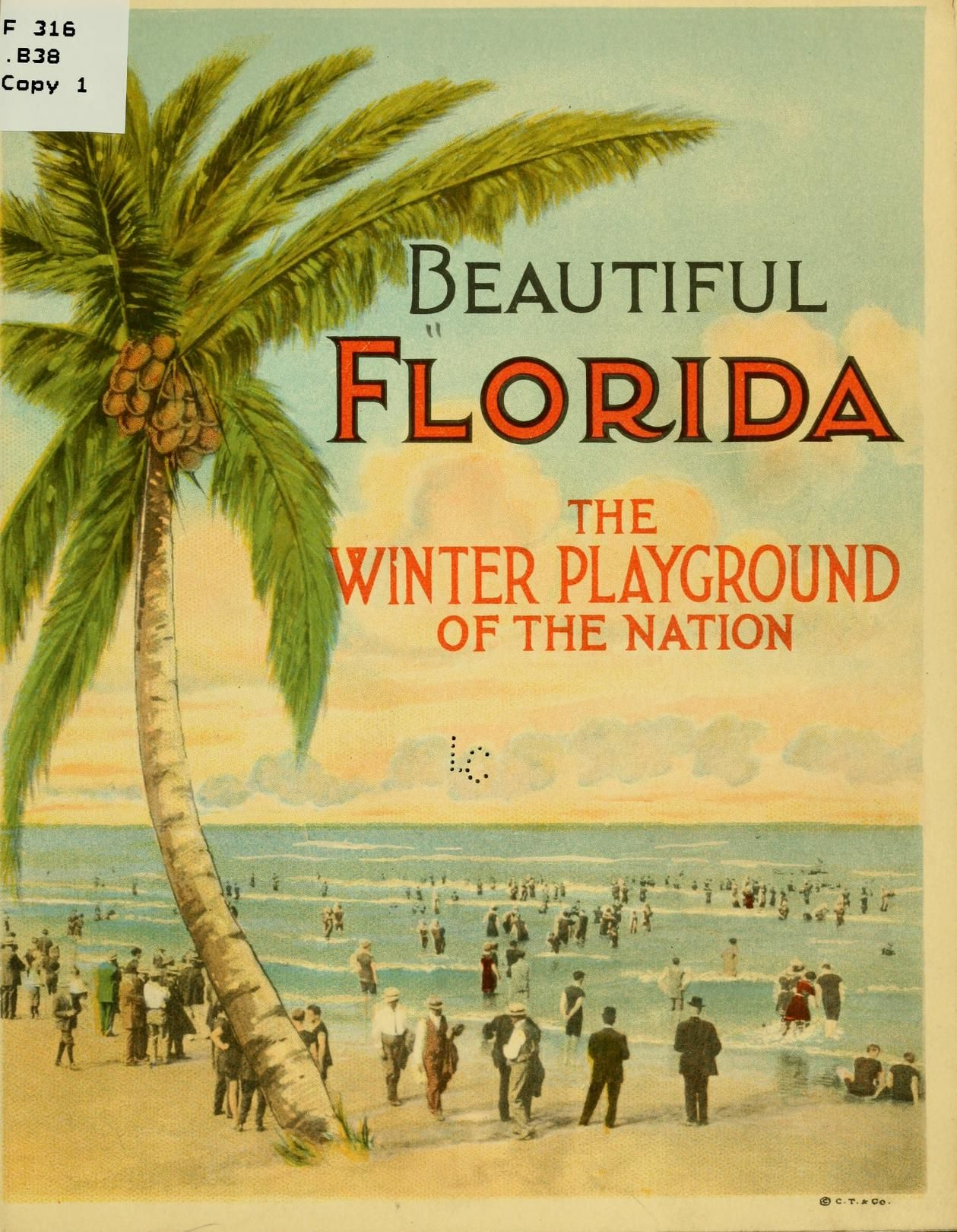 This picture does a good job in showing my point of view on Florida. I love to visit in the winter because the nice weather never gets to escape from here. The downside to Florida is all of the tourist which means that it will be hard to cope with all the people coming and going.