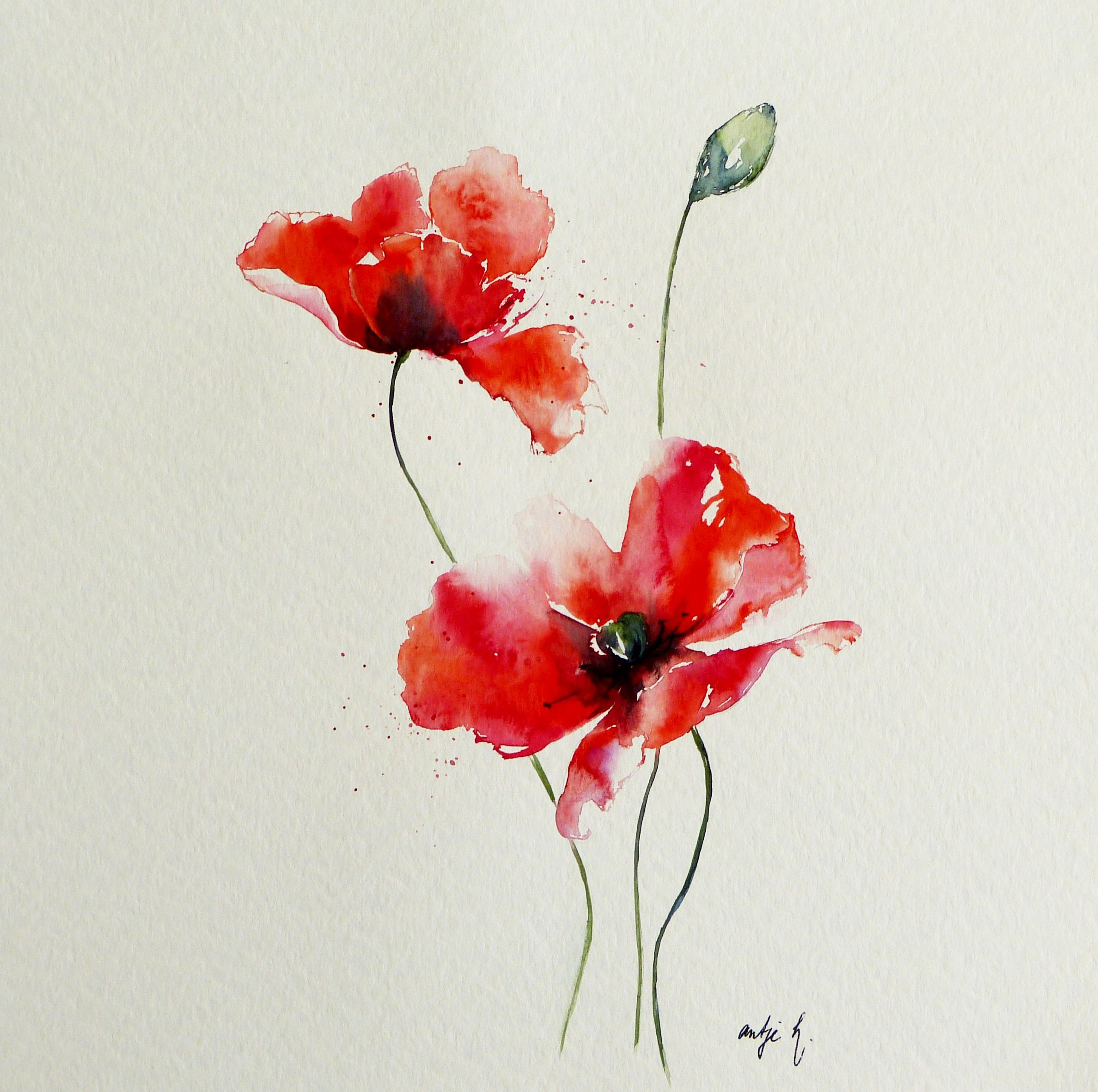 Mohnkomposition Ii Watercolor 40 40 Antje Hettner Aquarell