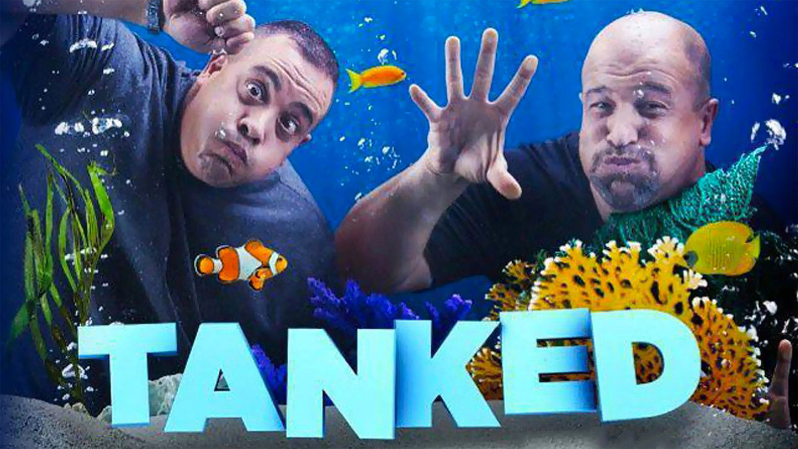 Animal Animal Tank, Tv stars
