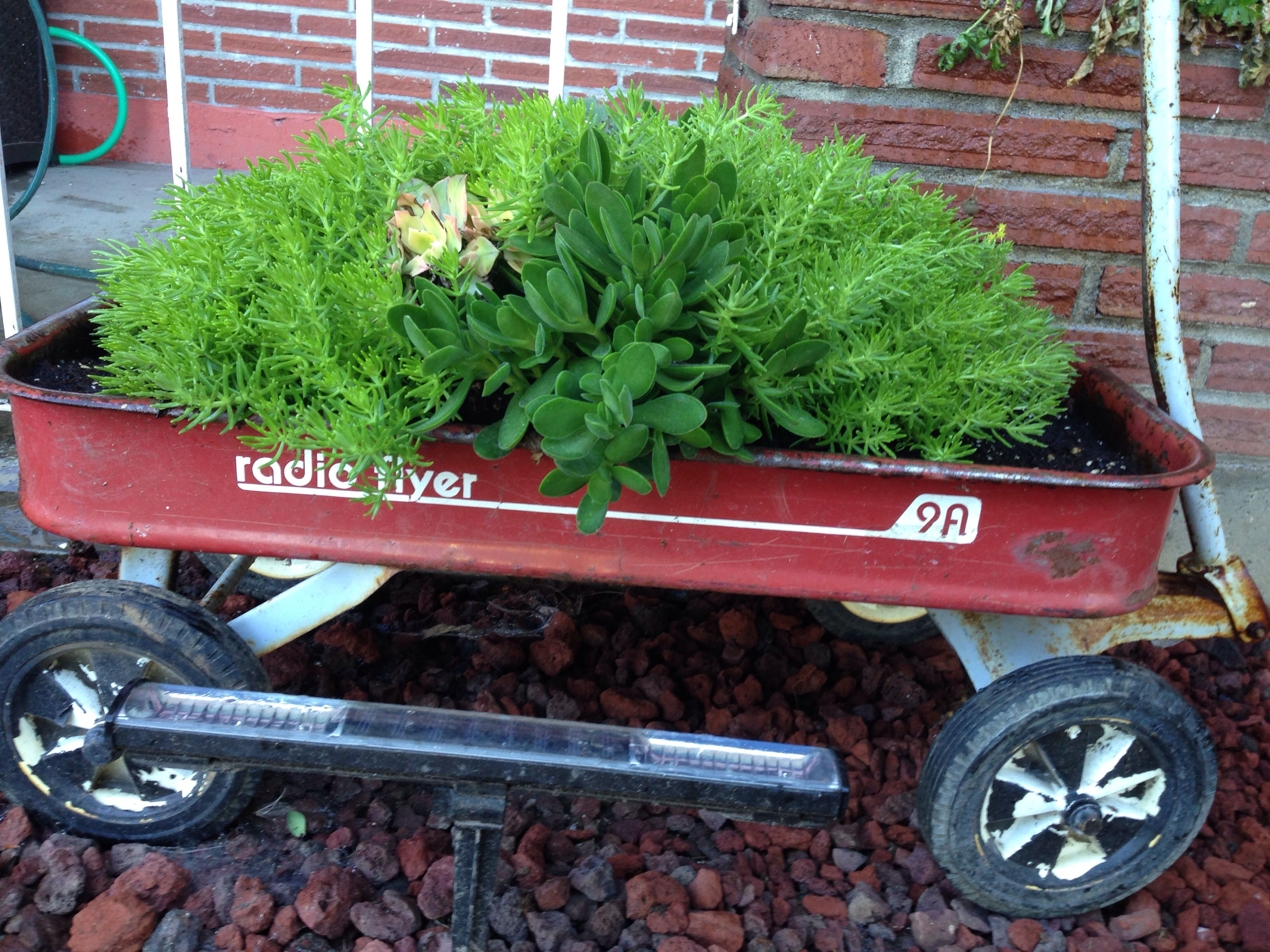 One Of The Vintage Radio Flyer Wagon Planter Container Garden