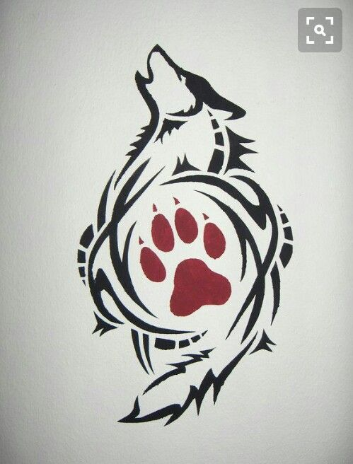 Colorear Aullador Silueta De Lobo   www.imagenesmi.com