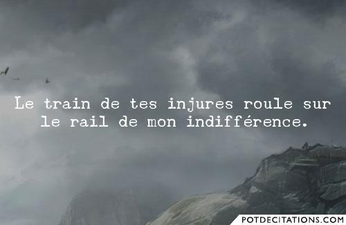 Le Train De Tes Injures Roule Sur Le Rail De Mon