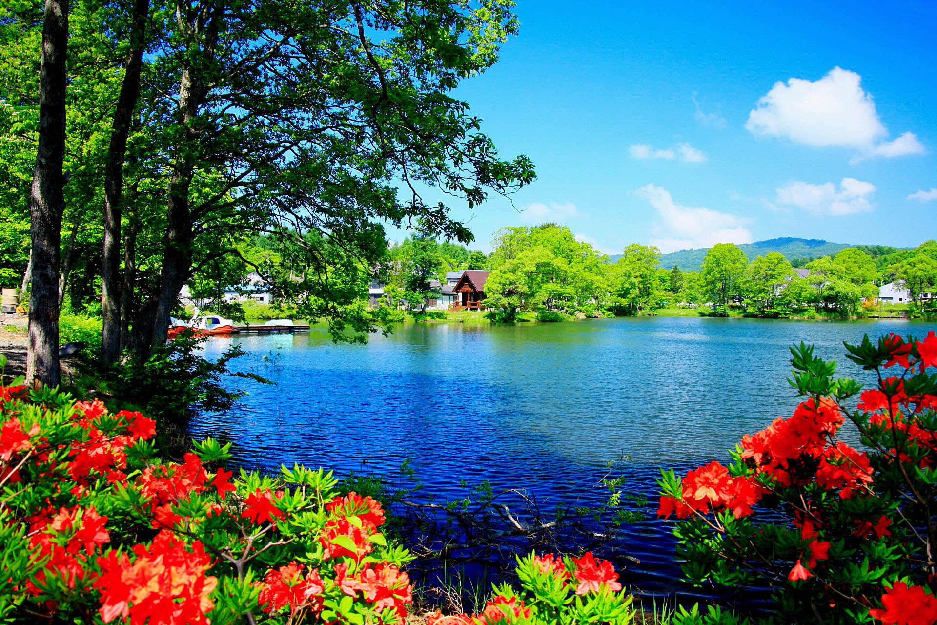 Beautiful Nature Scenery Hd Wallpapers Desktop Hd Wallpapers Beautiful Nature Wallpaper Beautiful Images Nature Beautiful Nature