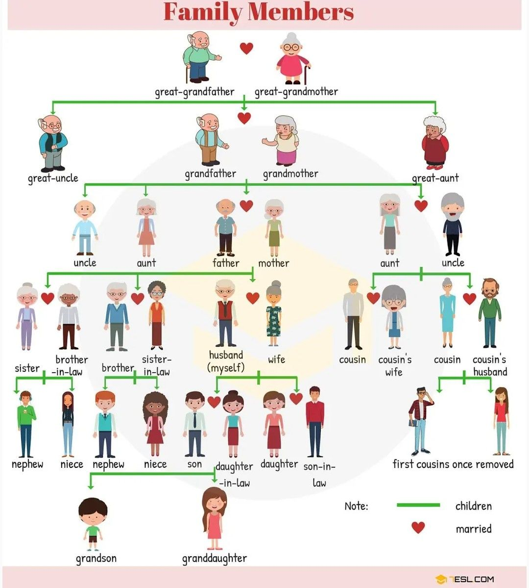 Family Members In English Language