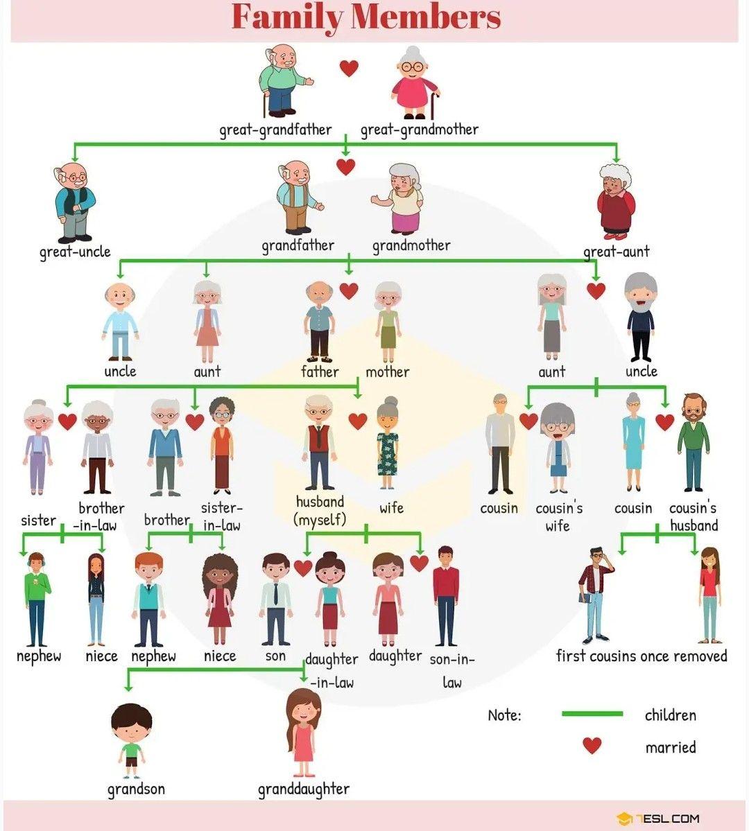 Family Members In English Language Planos De Aula De Ingles