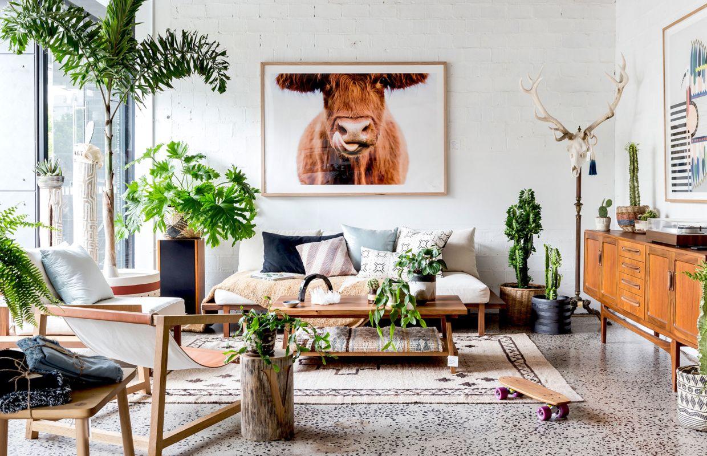 18++ Living room floor plants information