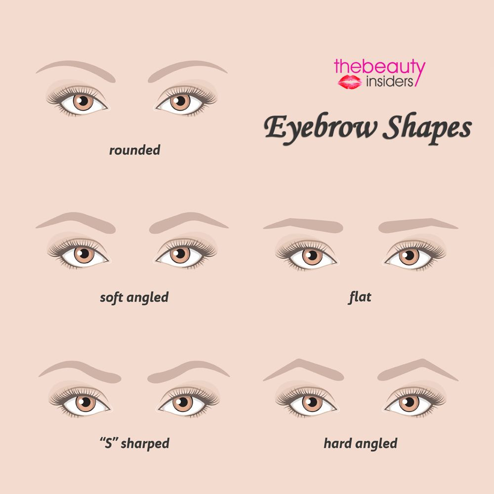 Which Is Your Eyebrow Shape Comment Below And How Many Have The