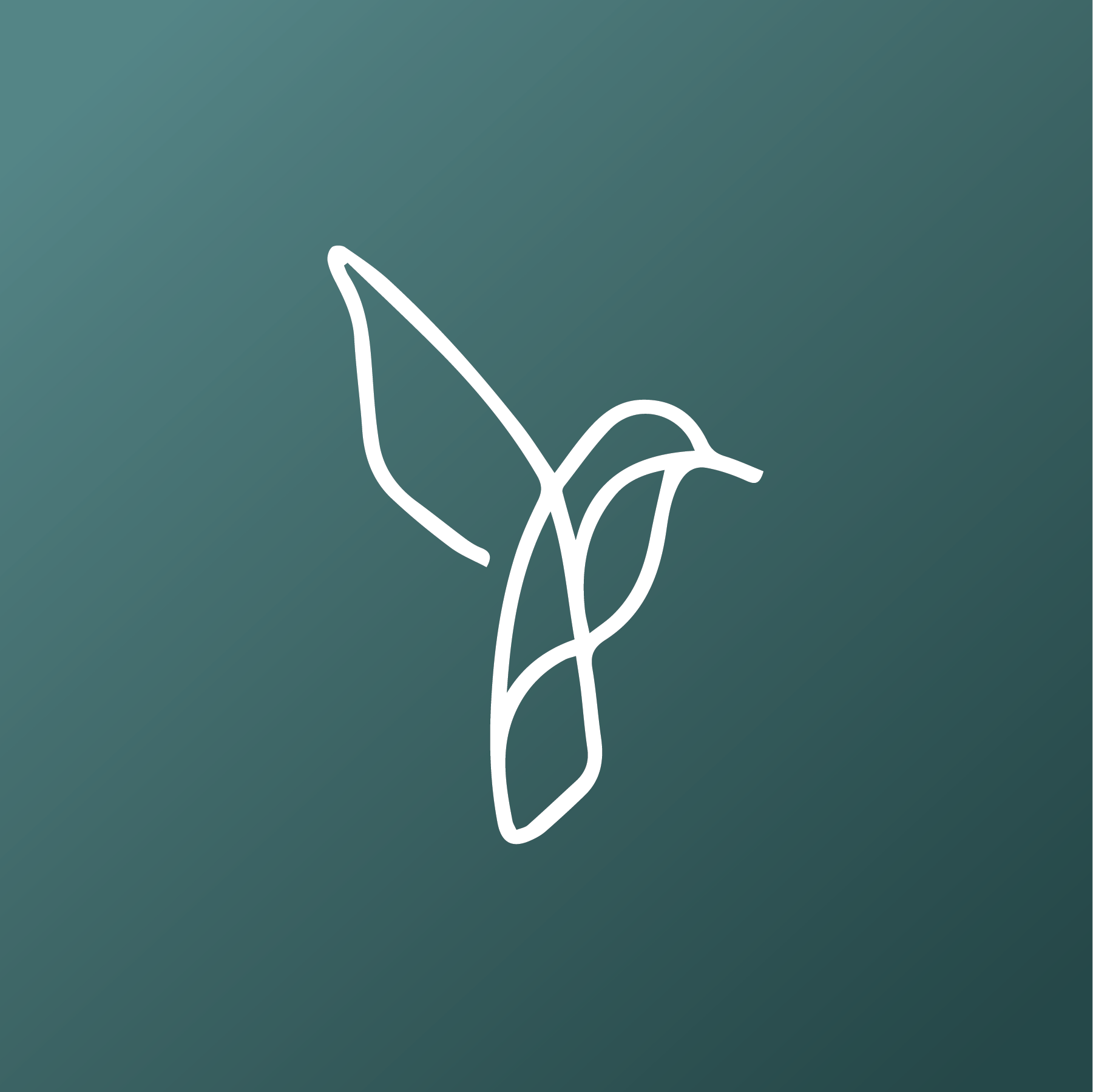 Hummingbird Logo Icon Creative Branding Creative Branding Design Branding Design Studio