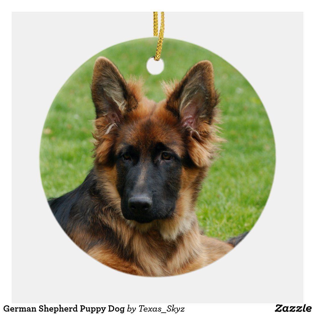 White German Shepherd Puppies Texas 2021