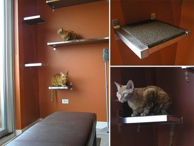 diy cat climbing shelves made fro ikea shelves and carpet tiles rh pinterest com DIY Cat Climbing Structures Do It Yourself Cat Shelves