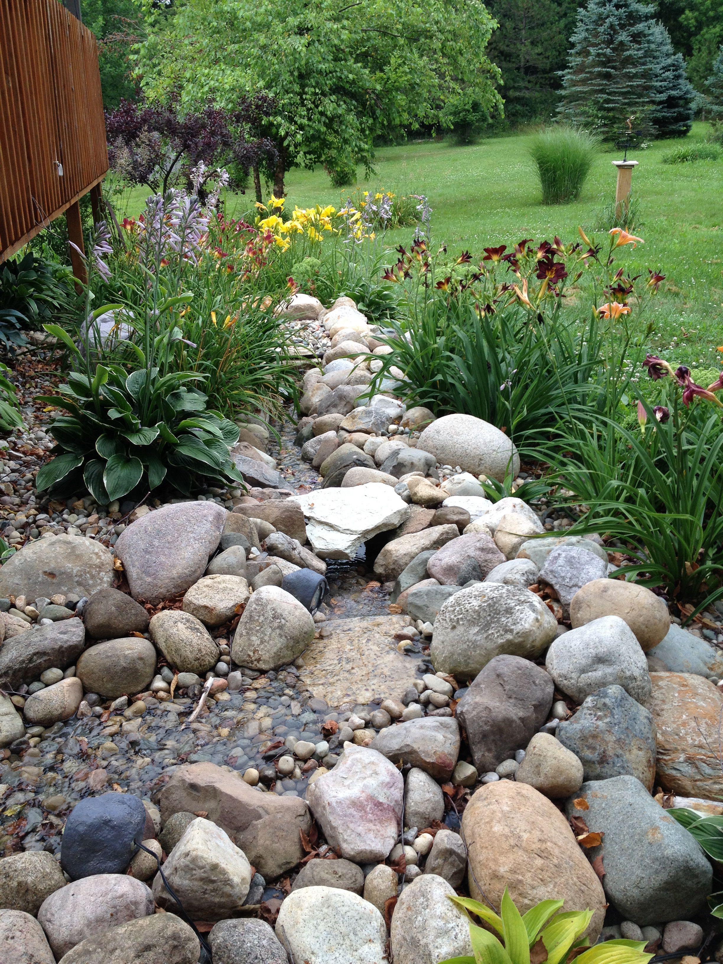 Our water feature. Conrad Water features, Garden, Plants