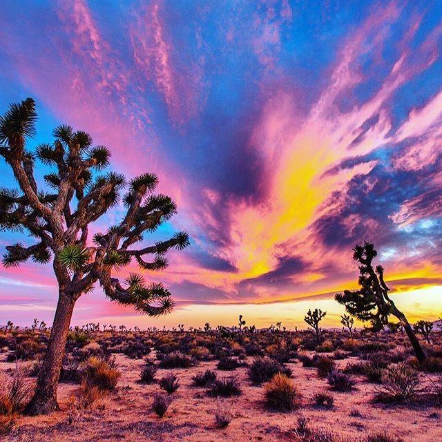 Um pôr-do-sol no deserto :) #deser #nature #sunset #nationalgeographic #usa #amarica #bolbolj #nabeelo #photograph #photography #lovely #romantic #colorful