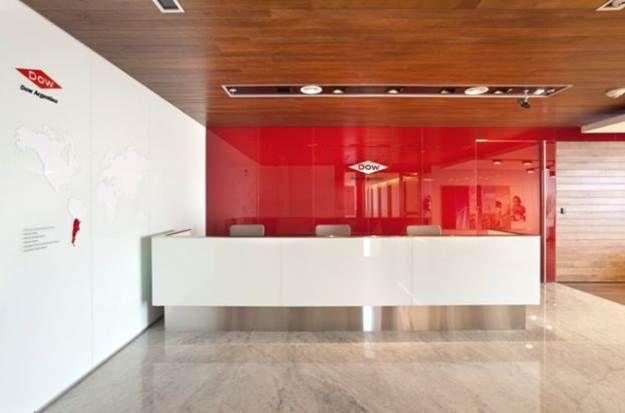 Bright Color Accent Wall Reception Logo Office Interior