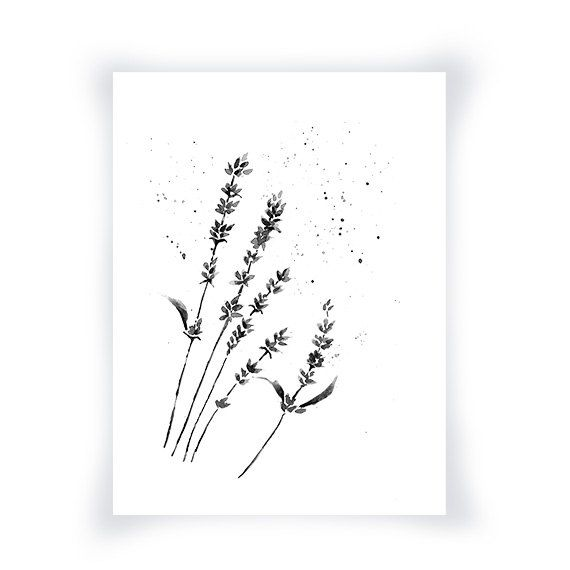 Black And White Print From My Original Watercolor, Lavender Flowers ...