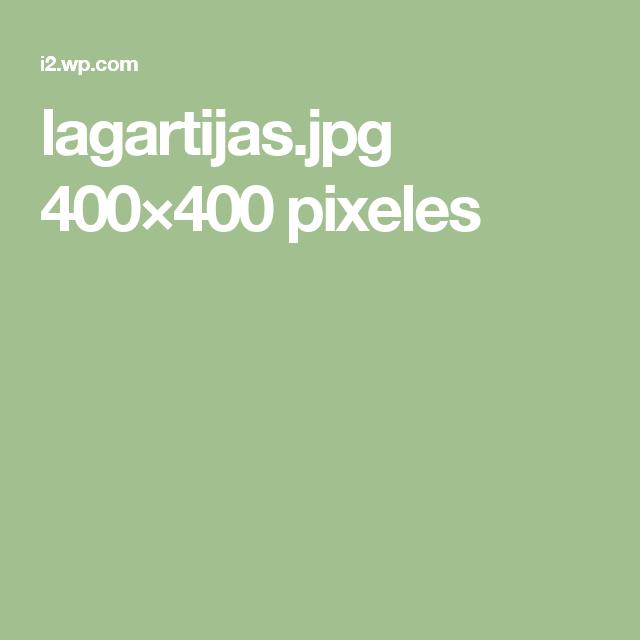 lagartijas.jpg 400×400 pixeles