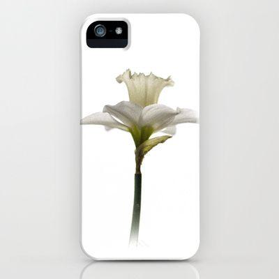 Daffodil iPhone Case by David P Hunter - $35.00