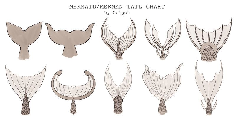 """""""Mermaid/Merman Tail chart by Xelgot This chart was commissioned to use for reference. It might be help for others too. """""""