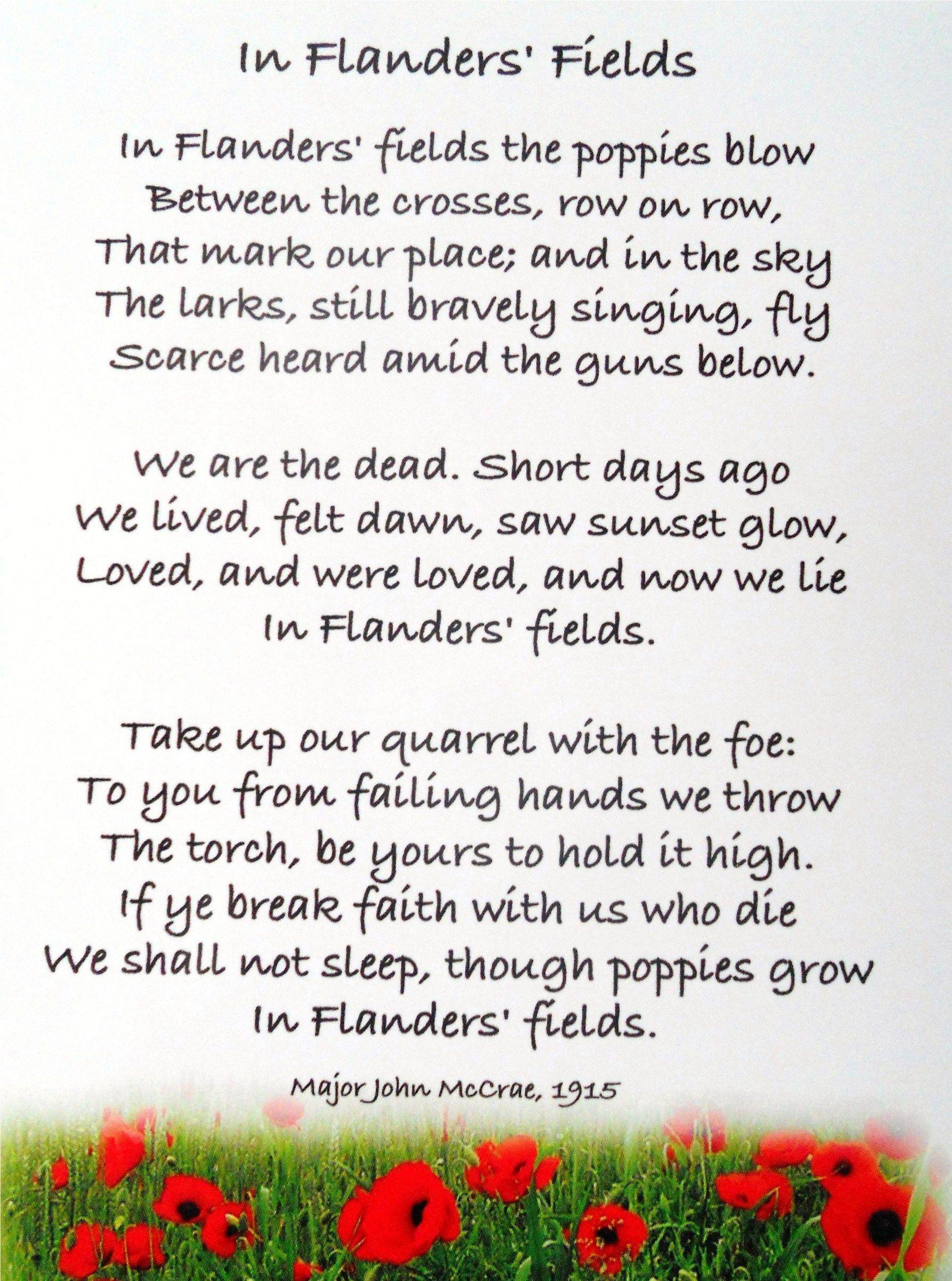 In Flander Field Poem Remembrance Day Poems Paraphrase
