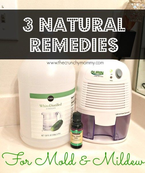 Natural Remedies For Bathroom Mold Mildew Dehumidifier - Natural mold remover for bathroom