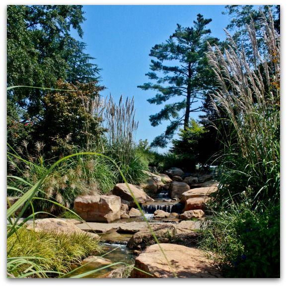 Greenville Spotlight Legacy Park Greenville Park Summer Activities