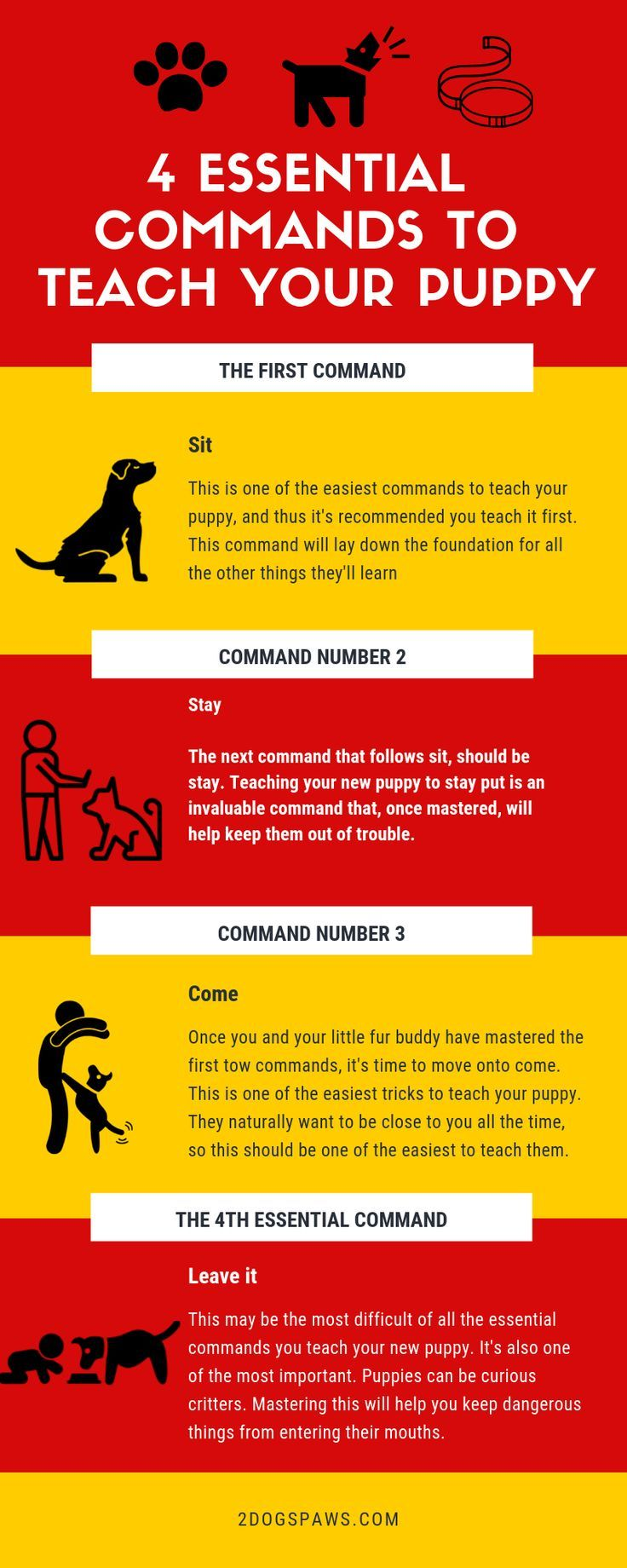 4 Essential Commands Every New Puppy Should Learn