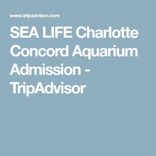 Sea Life Charlotte Concord Aquarium Admission Tripadvisor 8th