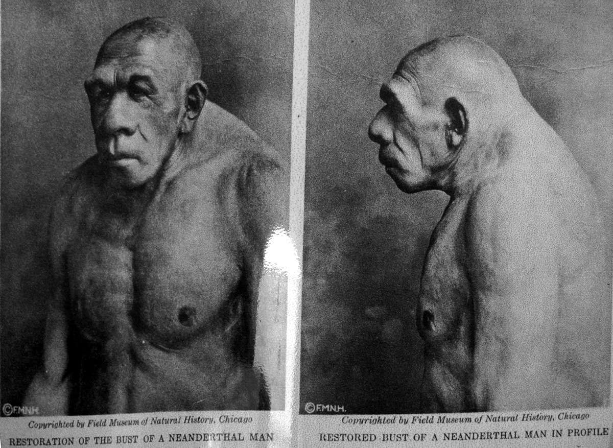 Imagine A Kind Of Four Armed Hairless Neanderthal