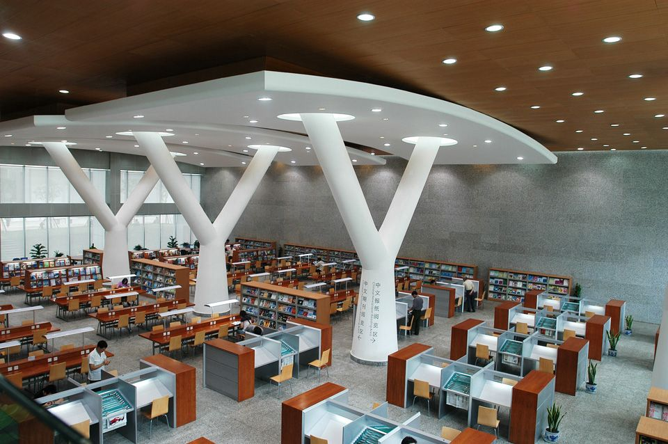 Chongqing library perkins eastman chongqing for Reading room interior design