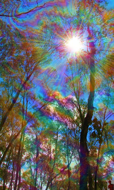 Nature In 2019 Trippy Wallpaper Psychedelic Art Trippy
