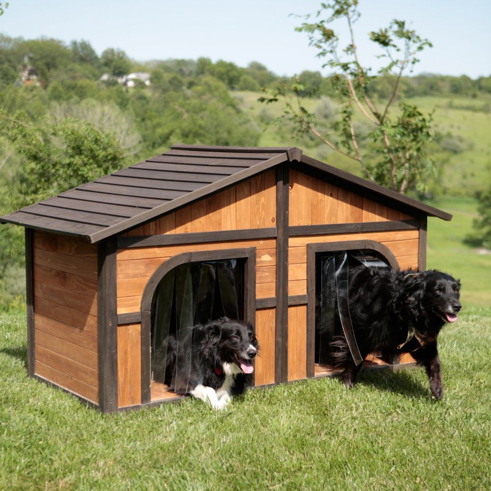 Boomer George Darker Stain Duplex Dog House With Free Dog Doors