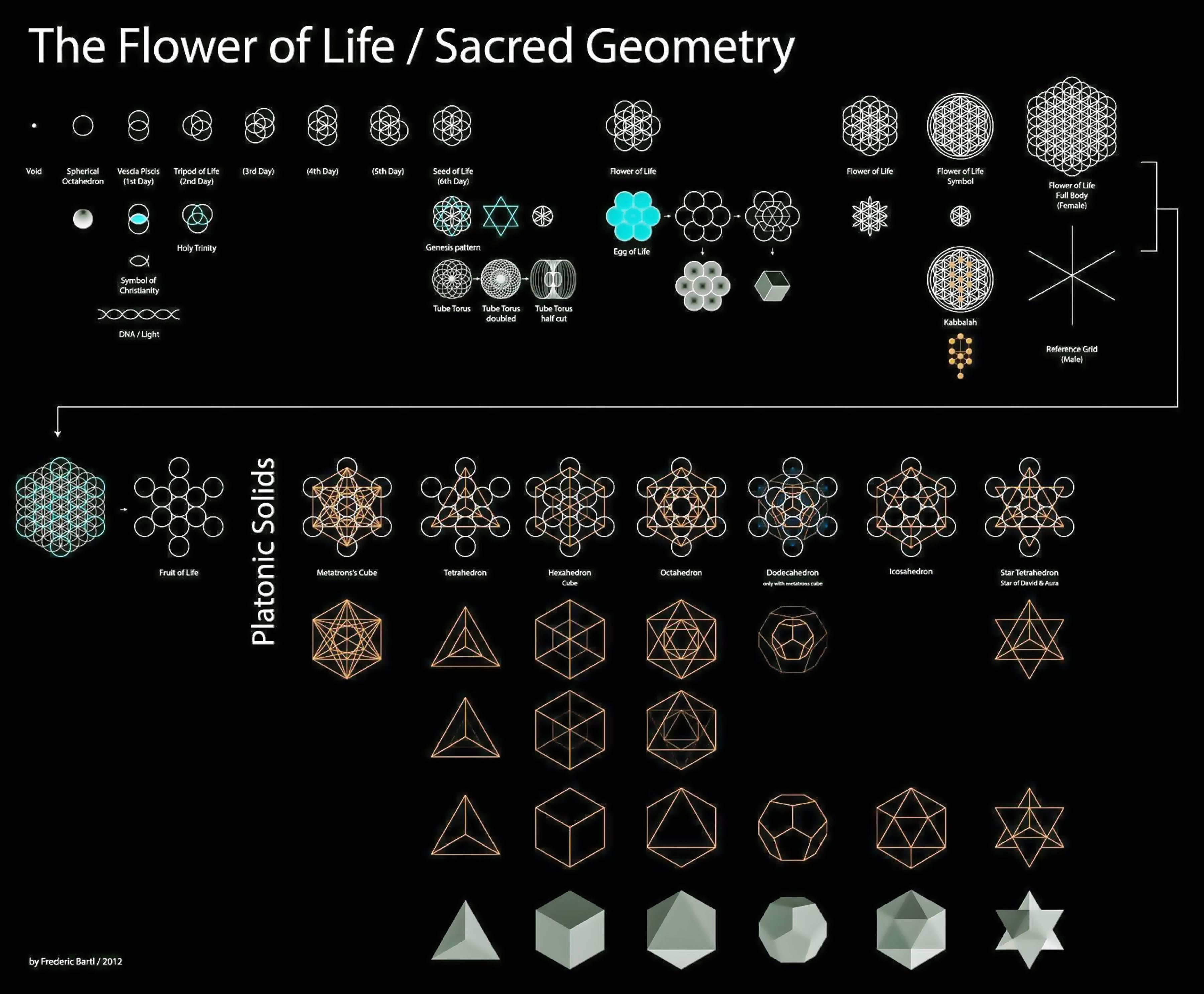 The flower of life sacred geometry pinteres 49f7b5b623b13348940b4b0589a45bd7g buycottarizona