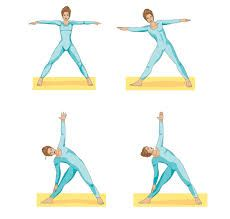 triangle pose great for spiral line  yoga poses for