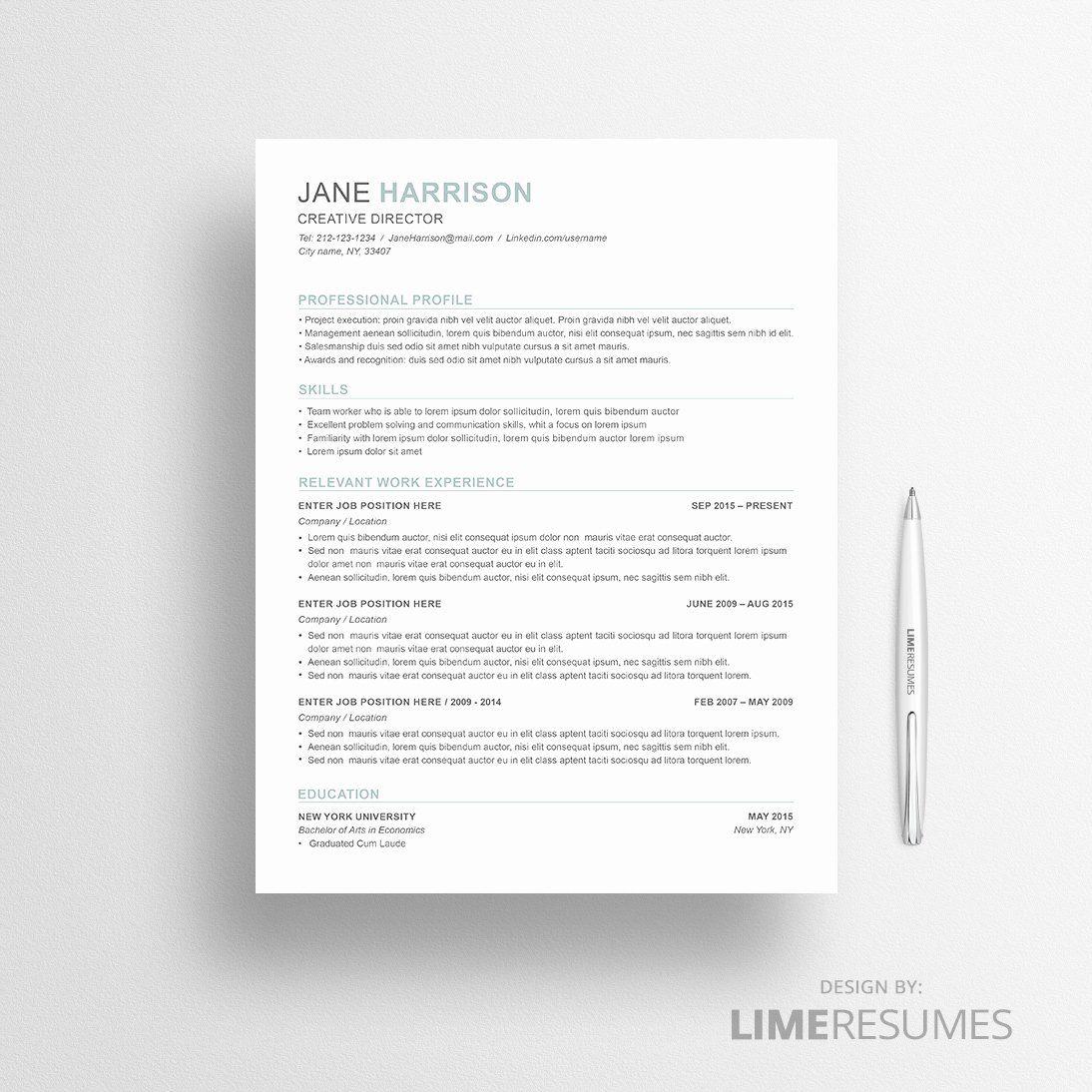 Combination resume template word elegant bination resume