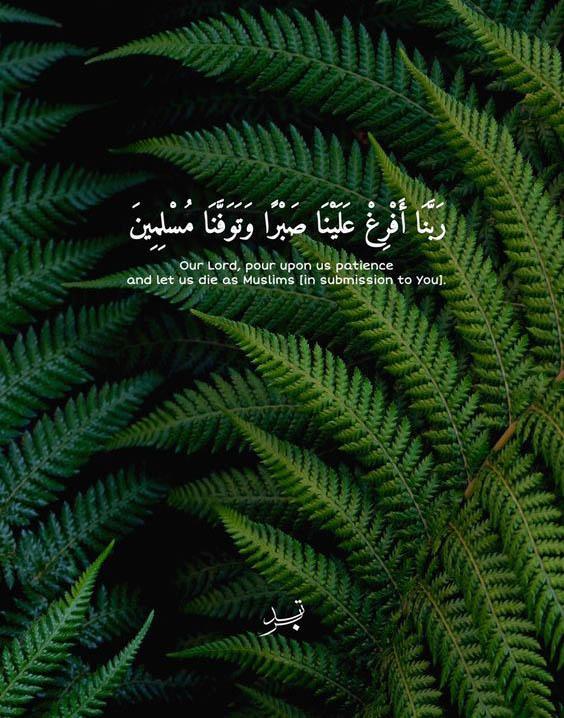 کلیپ در مورد خدا ویمگز In 2020 Quran Quotes Verses Quran Quotes Inspirational Quran Quotes Love