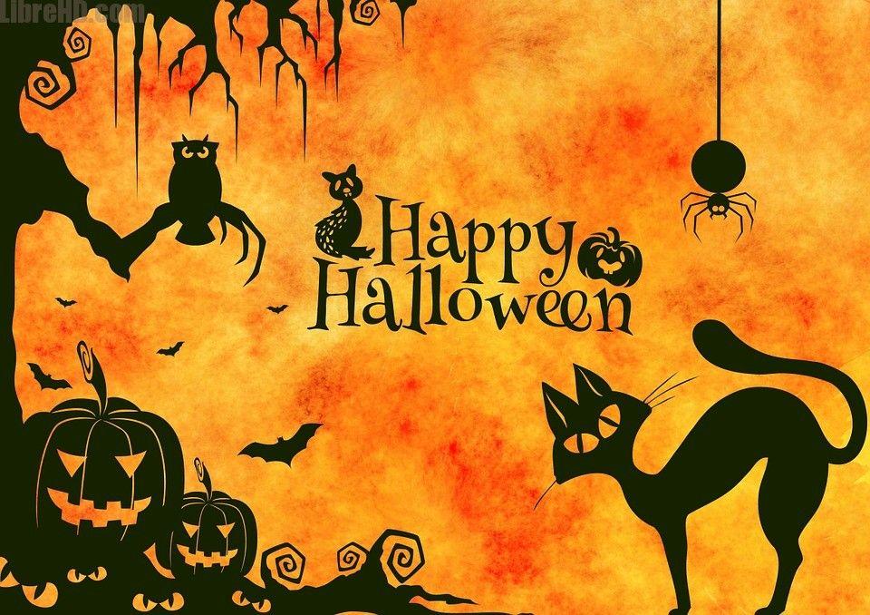 Geniales imagenes de halloween para compartir hd gifs imagenes geniales imagenes de halloween para compartir hd gifs imagenes divertidas thecheapjerseys Images