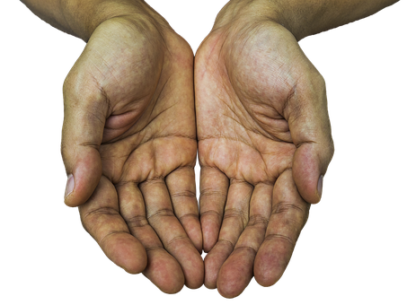 Receiving Hands Hands Receive Hands Giving Hands Hand Reference