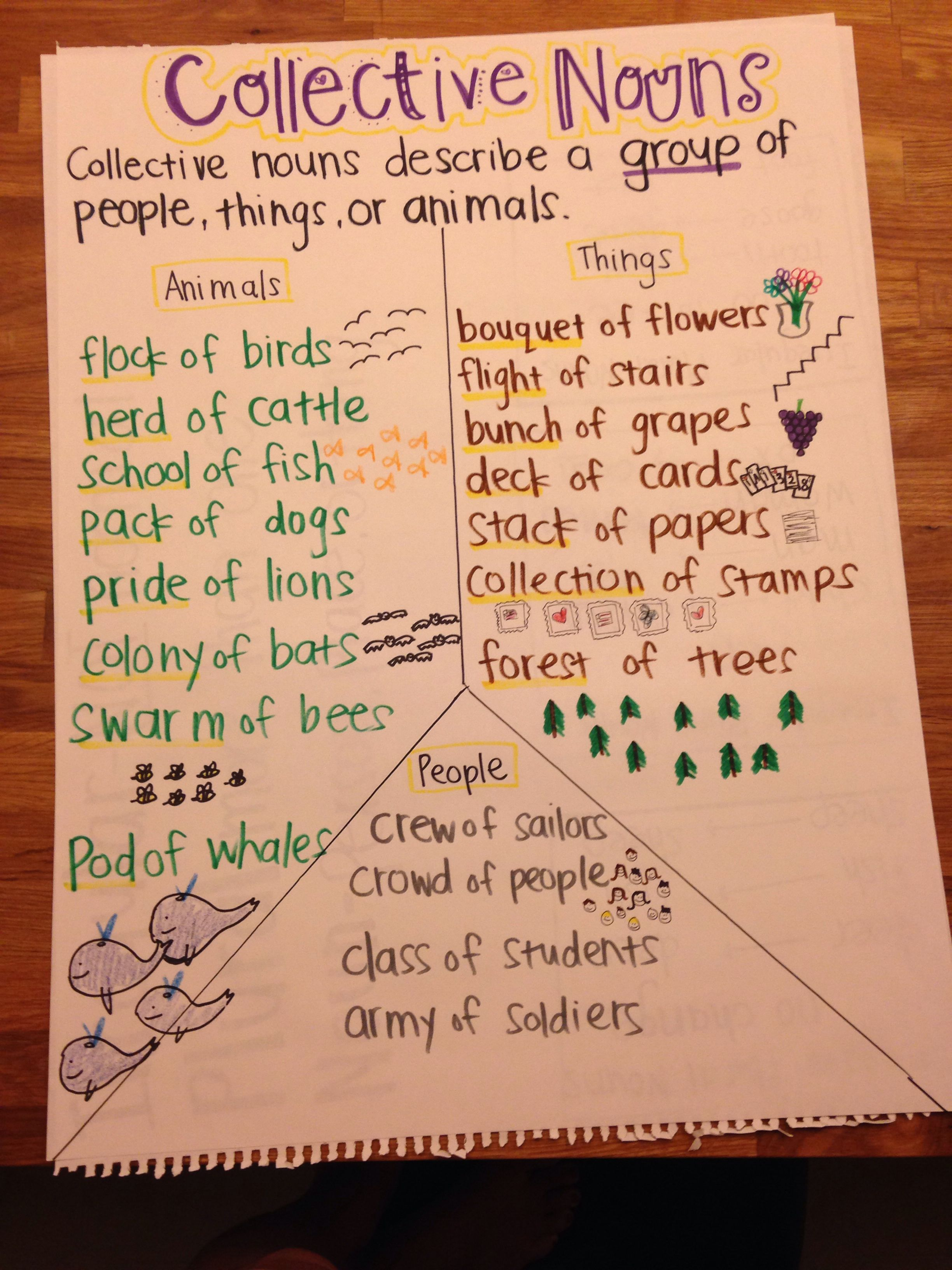 Collective Noun Anchor Chart