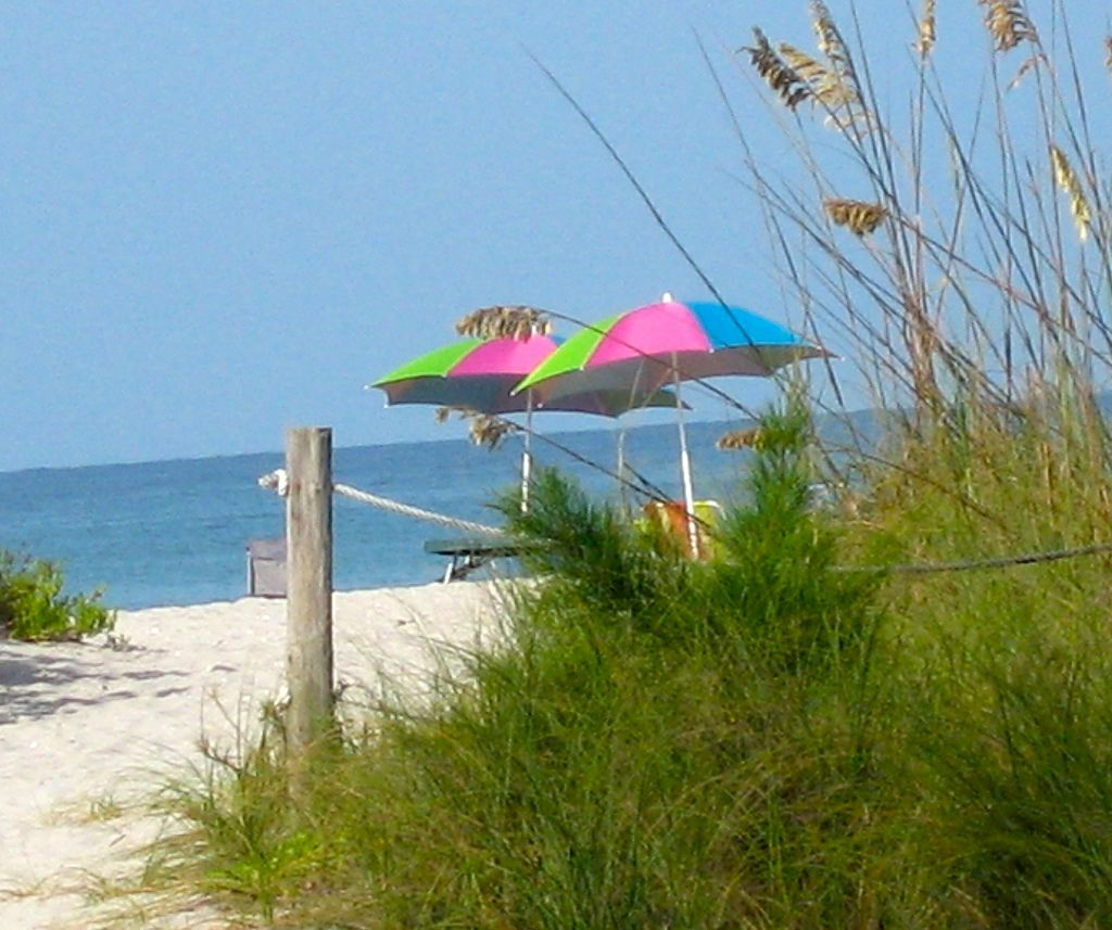 Beach Umbrellas Beach umbrella, Beach, Umbrella