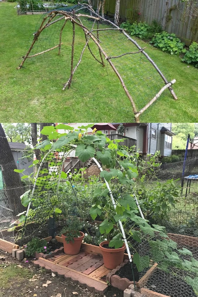 24 Easy Diy Garden Trellis Ideas Plant Structures A Piece Of Rainbow Diy Garden Trellis Garden Trellis Garden Trellis Designs