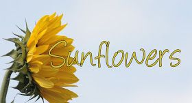 "Inspiration Avenue: ""Sunflowers"" This weeks Challenge"
