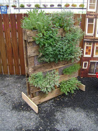 pallet vertical garden garden pinterest potager jardins et jardins verticaux. Black Bedroom Furniture Sets. Home Design Ideas