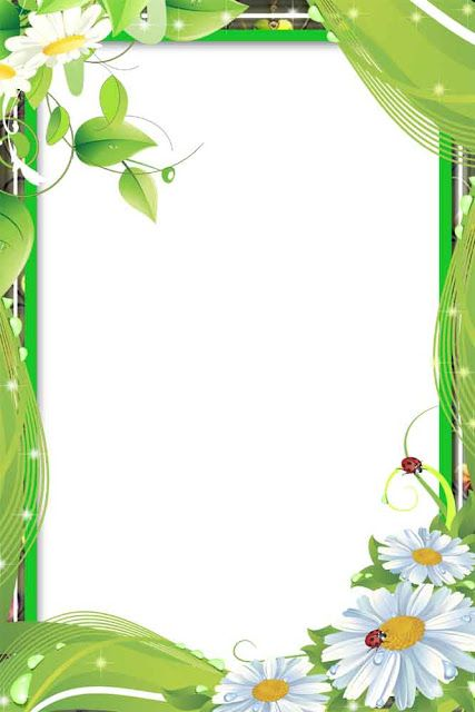 png frame flower frame png love frame png romantic frame wedding ...