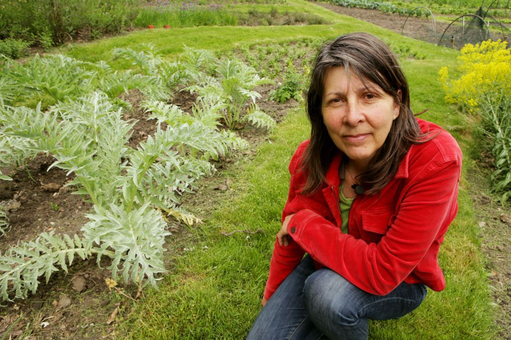 Venkel is een veelzijdige en decoratieve plant voor de moestuin. Annemarie vertelt in de video wat je allemaal met venkel kunt doen.
