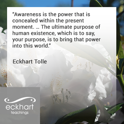 Quote by Eckhart Tolle