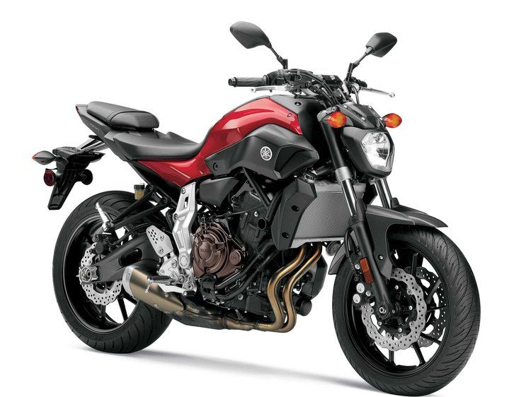Starter: 12 Best Beginner Motorcycles to Buy as Your First