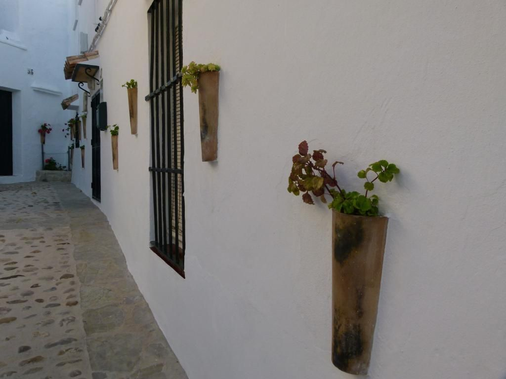 Rincones de Andalucía / Places of Andalusia, by @pacogutisur